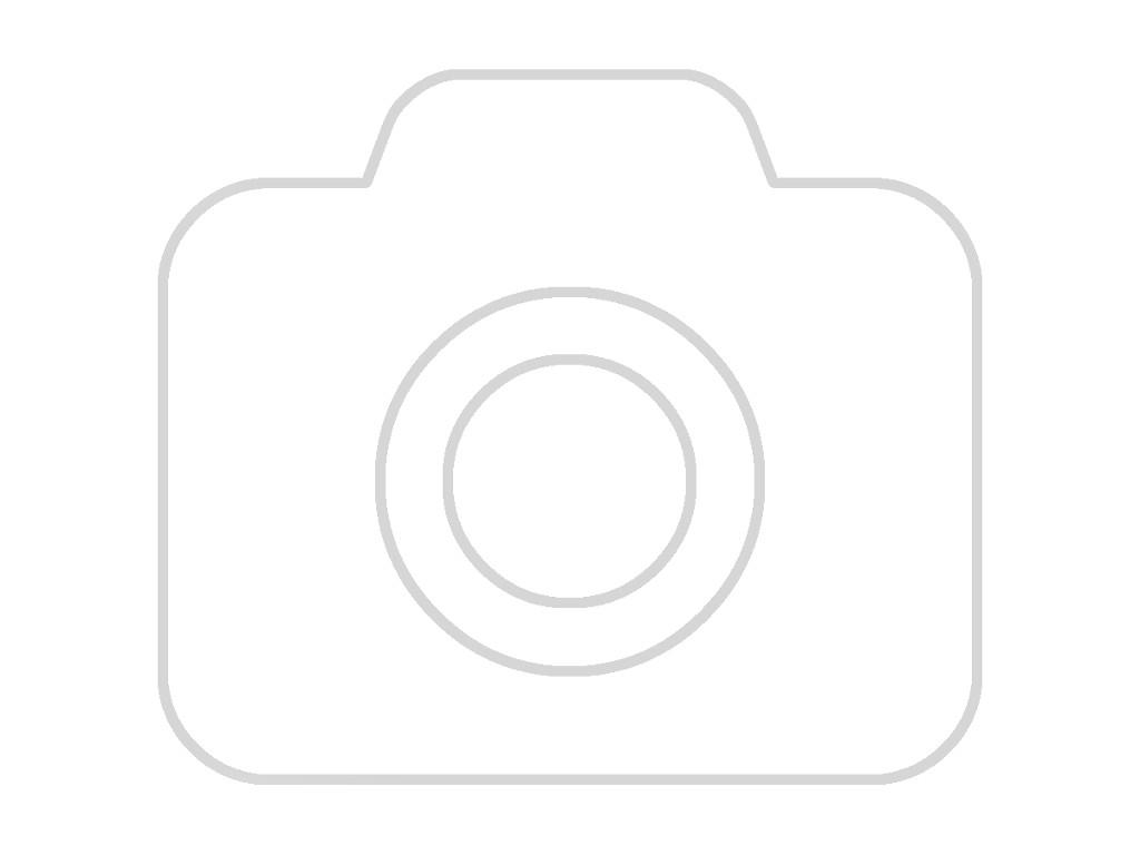 Części samochodowe :: Układ hamulcowy :: Układ ABS i ESP :: Sterowniki ABS